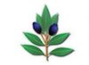 logo_herbario