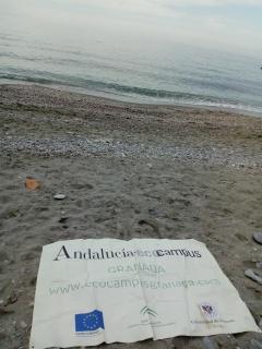 Ecocampus Granada por fin en el Mar