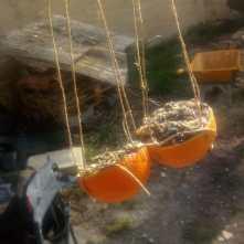 Naranjas con semillas y sebo