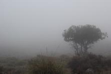 Vista a Sierra Nevada