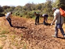 Charco seco del Llano de la Perdíz (llegamos tarde)